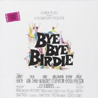 Birdie-ST