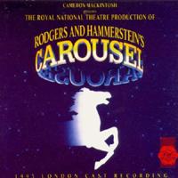 Carousel-Hytner-London